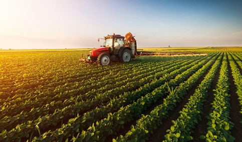 Agriculture and industrial Agri-business